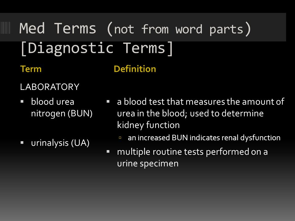 Chapter 6: Urinary System - ppt video online download